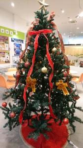 クリスマスシーズン到来